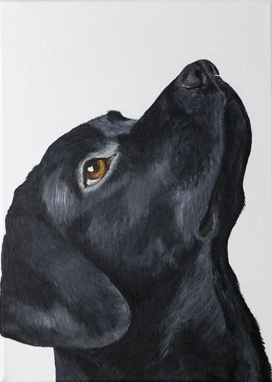 Labrador 2 - Image 0