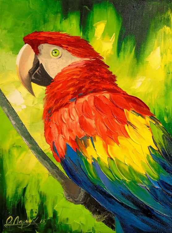 Parrot Kesha -