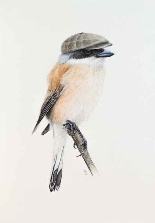 "Original pastel drawing ""Mr. Shrike"""