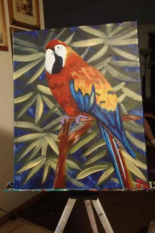 """""""Macaw"""" -"""