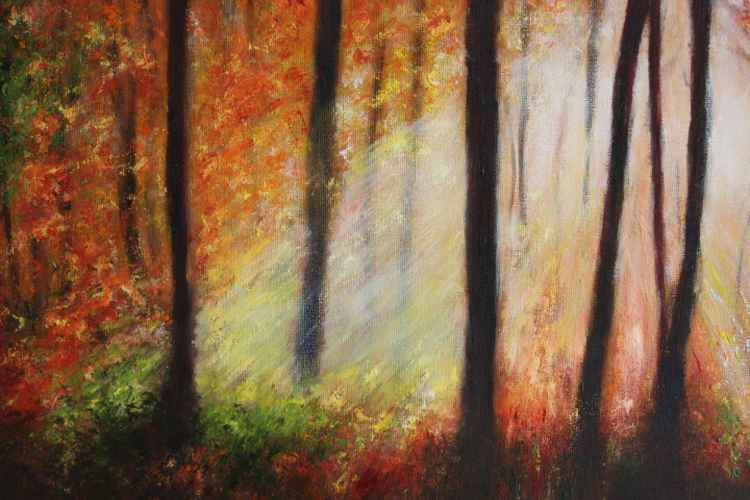 Autumn Woods -