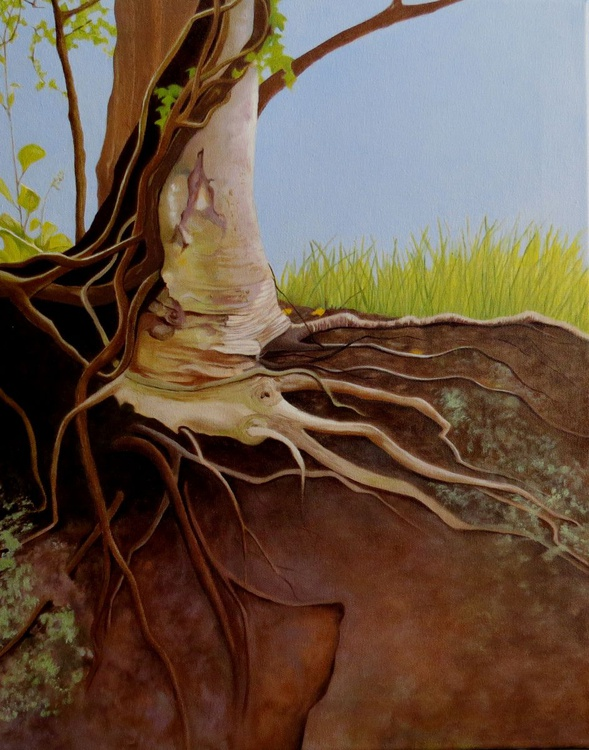 Holly Roots - Image 0