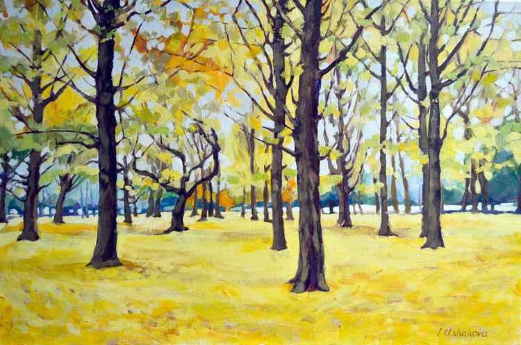 Autumn Forest. -