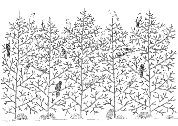 BIRDS AND HEDGEHOGS ON SPRUCES - Image 0