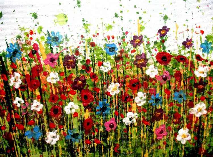 Vibrant Garden, Summer Colours.