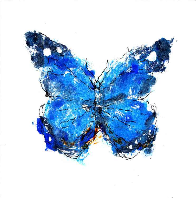 Butterfly 1515A -
