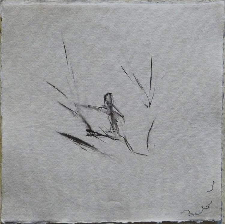 Cat on a ramble 9, 21x21 cm - Image 0