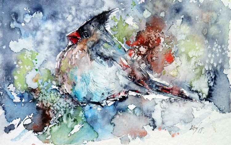 Cardinal bird in snow -