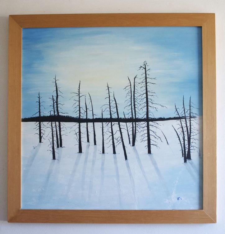 Winter Trees - Dartmoor - Image 0