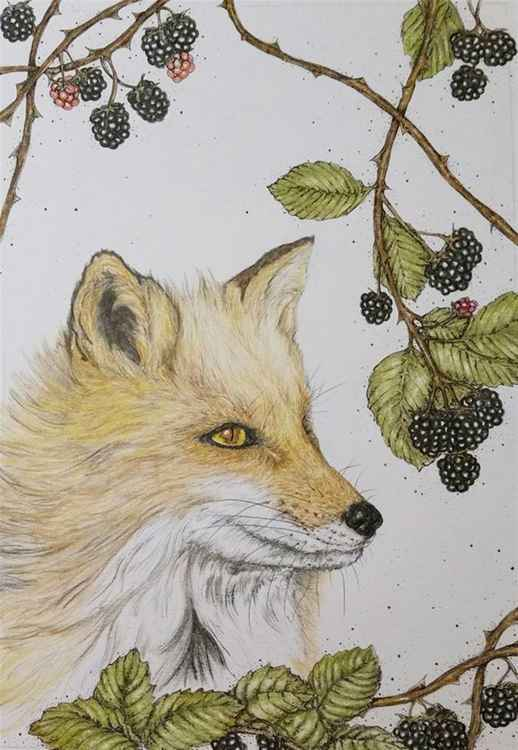 The Foxy Gentleman