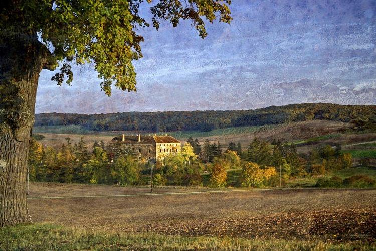 Autumn Impressions - Image 0