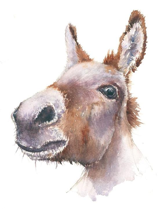 Delores Donkey - Image 0