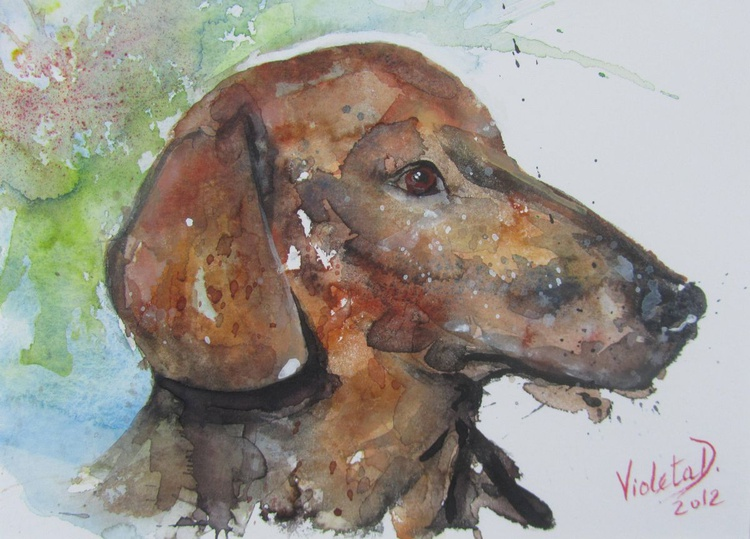 Mr. Hund (The Bavarian Mountain Hound) - Image 0