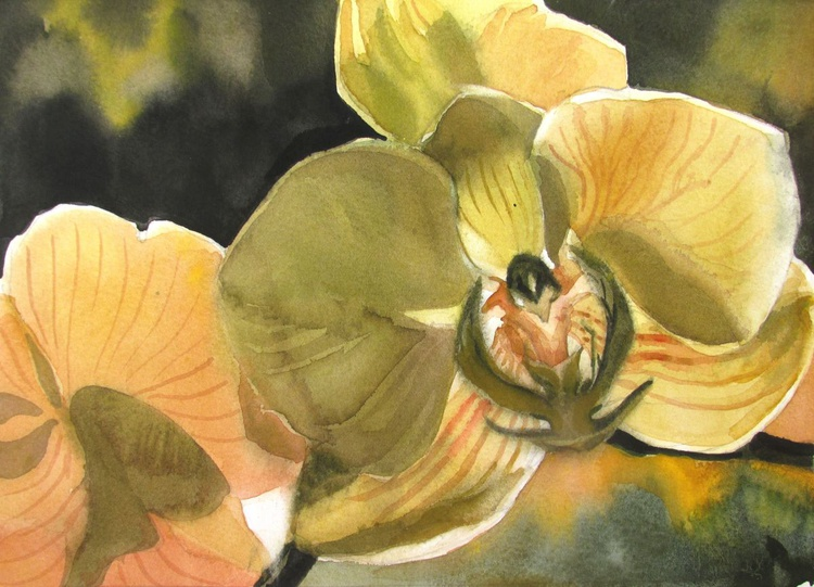 """A painting a day #2 """"Backlit orchid"""" - Image 0"""