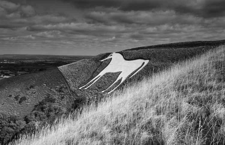 White Horse - Westbury -