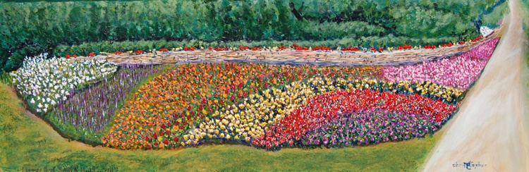 Flowerbed, South Holly - Image 0