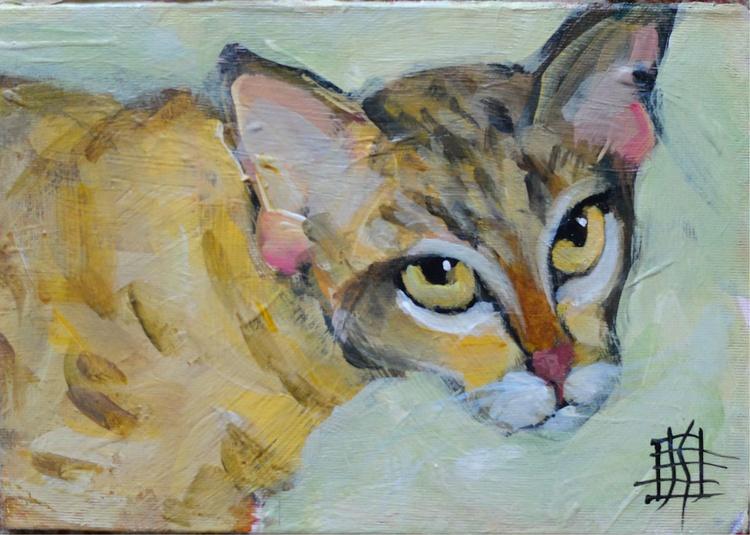 Goldie Cat - Image 0