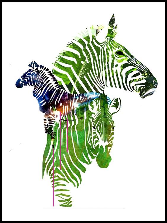 Portrait of Zebras - Image 0