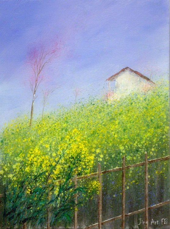 Yellow flower of Canola  around a farmhouse - Image 0
