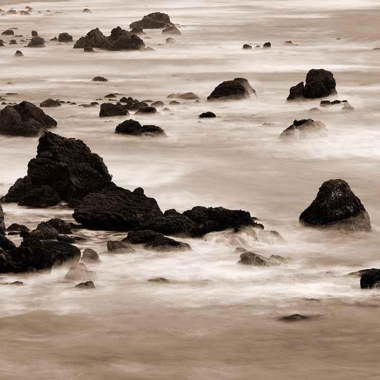 Sonoma Coast 1 -