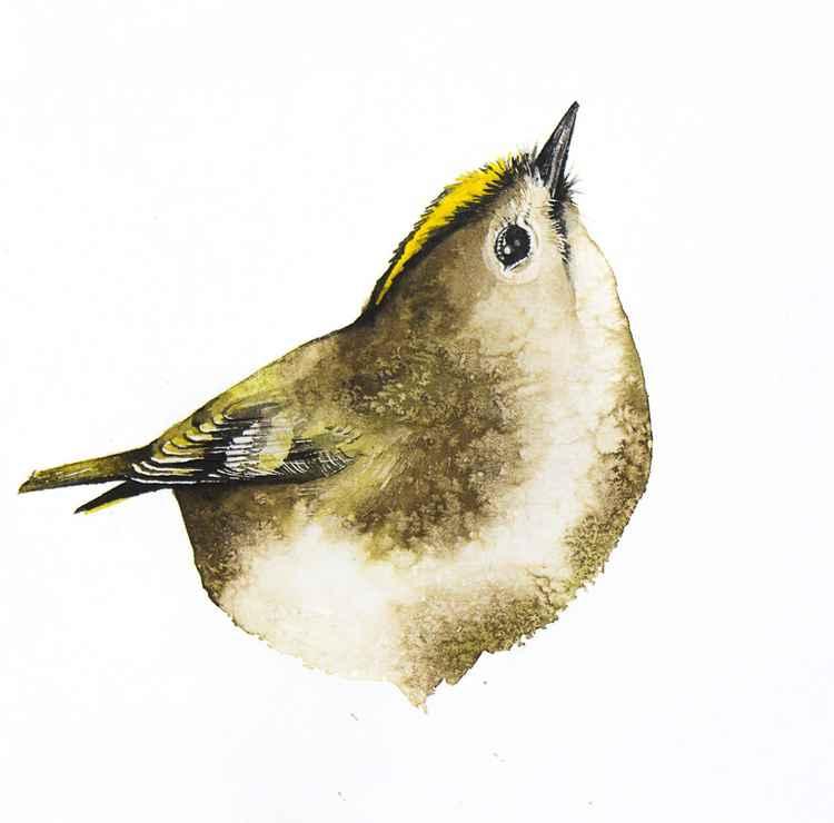 Goldcrest ,  bird, birds, animals, wildlife watercolour painting