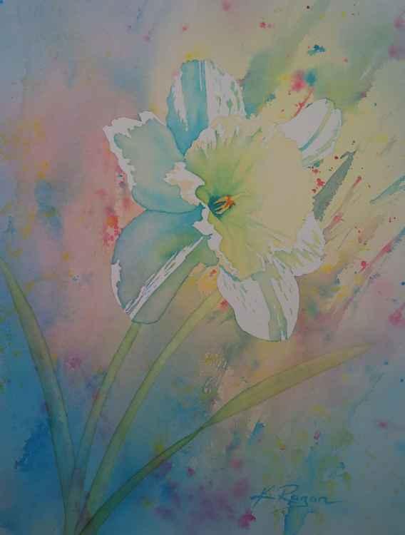 Primavera: Narcissus