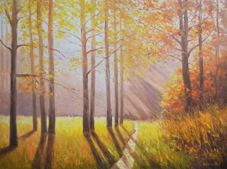 Illuminated Forest - Image 0