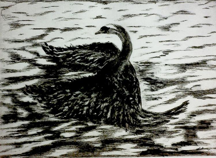 Swan in Solitude - Image 0