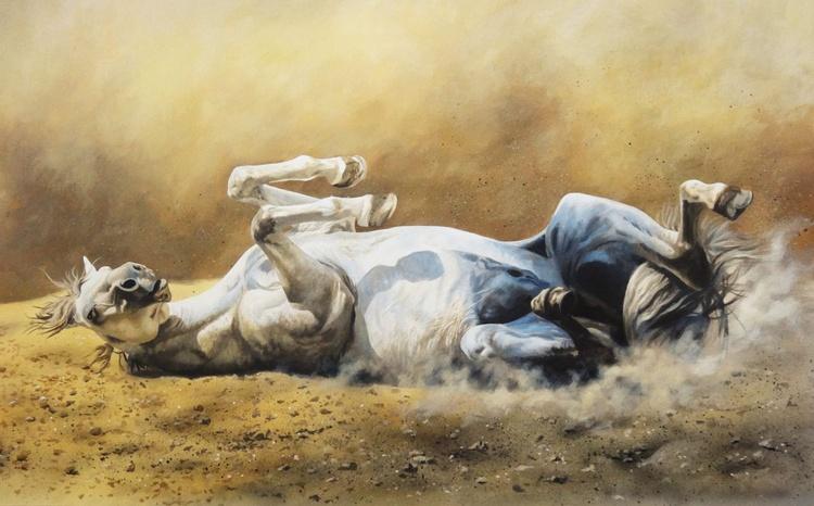 Wild horse dusting - Image 0