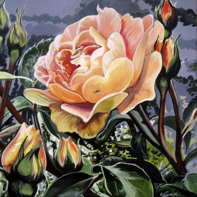 Summer Rose - Image 0
