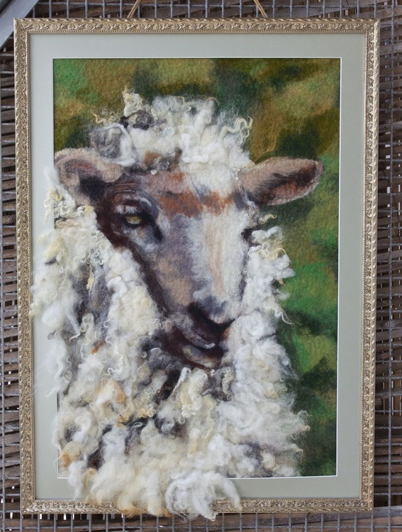 Sheep - Image 0