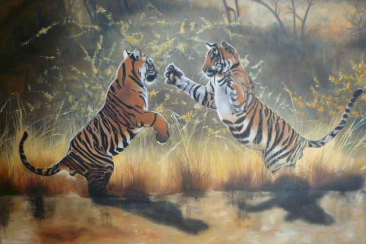 'Sparring Tigers'
