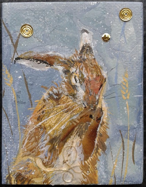 Hare washing - Image 0