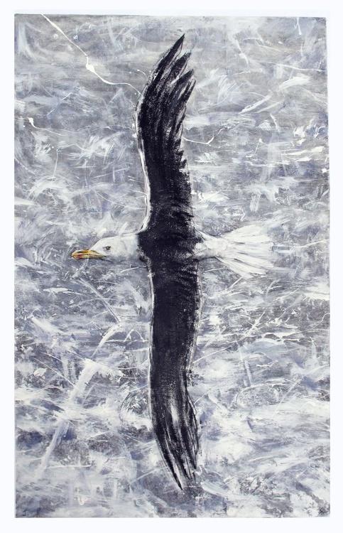 Black Backed Gull 2 - Image 0