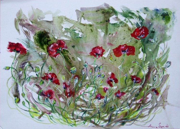 Poppies / Oil - Image 0