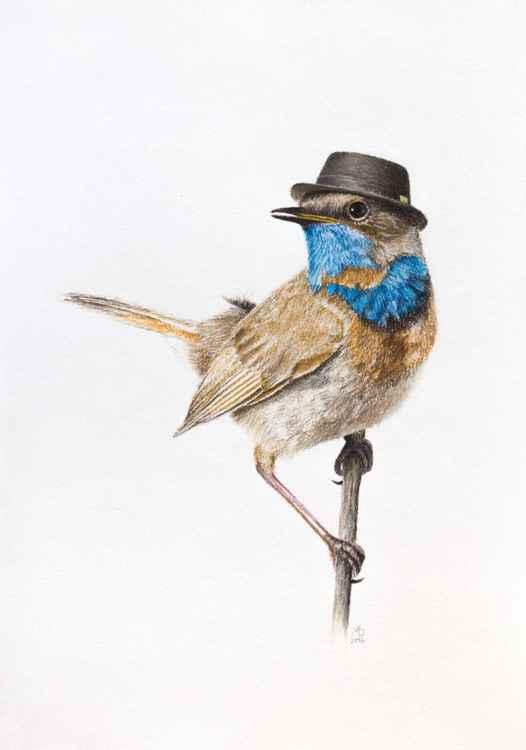 "Original pastel drawing ""Mr. Bluethroat"""