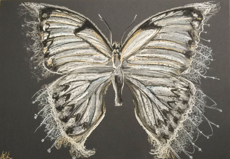The Butterfly. - Image 0
