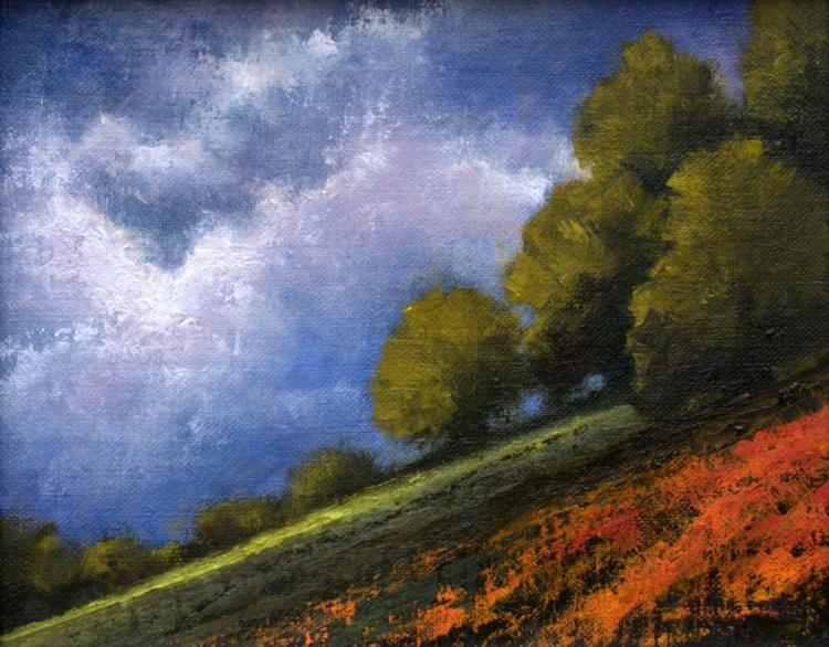 Hillside Poppy Field - Image 0