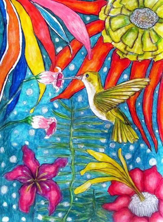 kolibri -