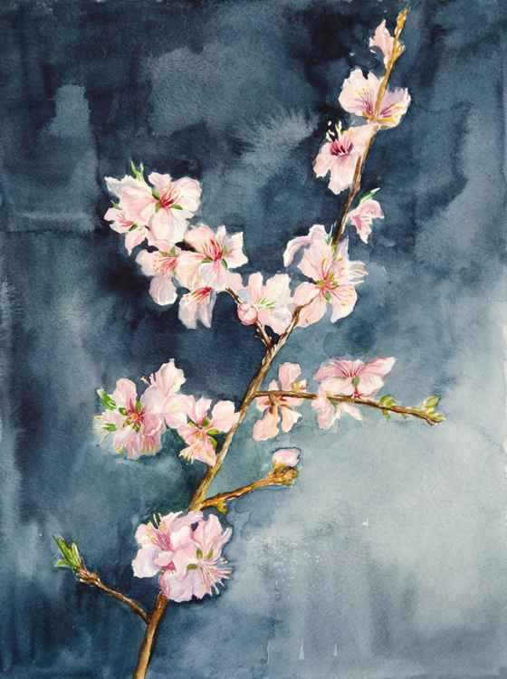 The branch of an almond tree. Watercolor - Image 0