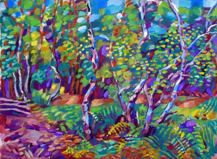 Summer Trees, Black Park, Country Park, S. Bucks, UK - Image 0