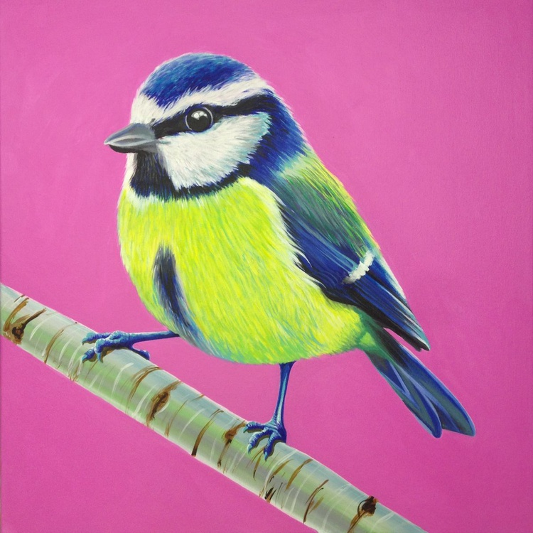 Original Painting of 'Blue Tit' by Kirstin Wood - Image 0