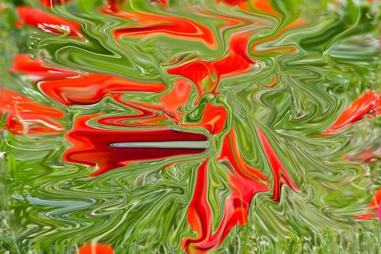 green and red colors - Image 0