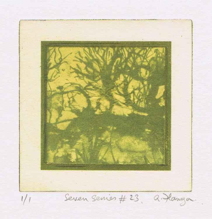 Seven Series #23 -
