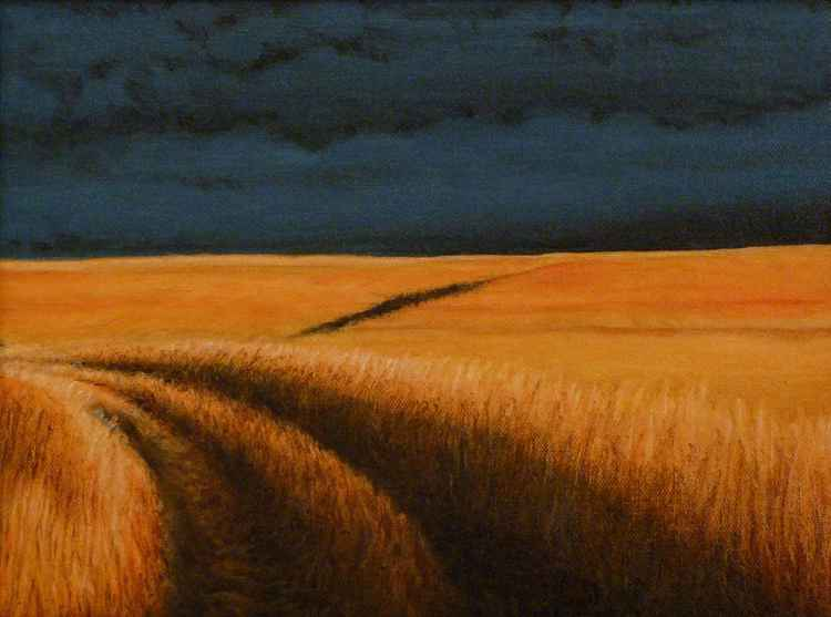 Storm on Konza Prairie -