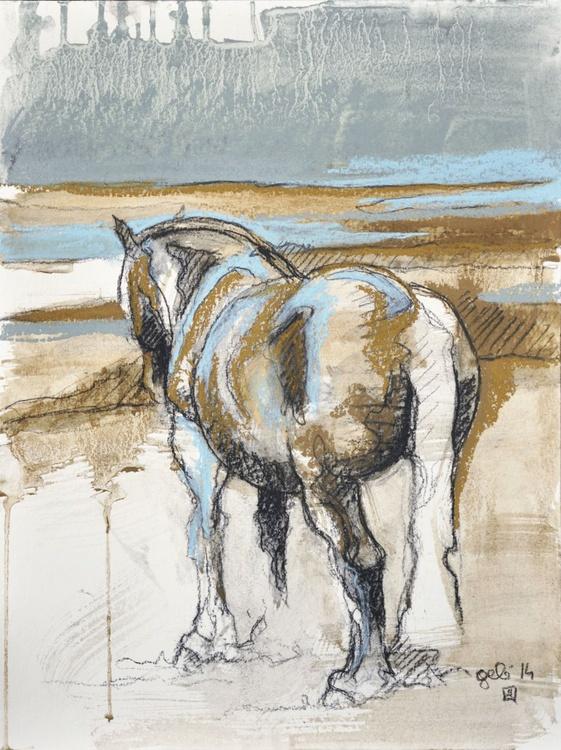 Equine Life 1 - Image 0