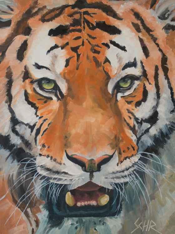 Tiger Tiger -