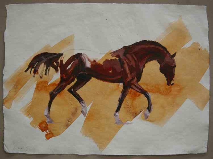 Arabian II (study) -