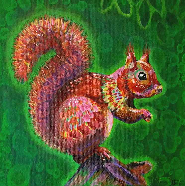 Red Squirrel -