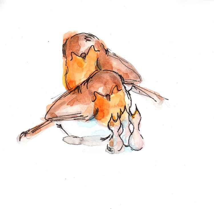 Two robins and three chicks 1515B -